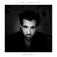 "Cover Art for ""Animal"""